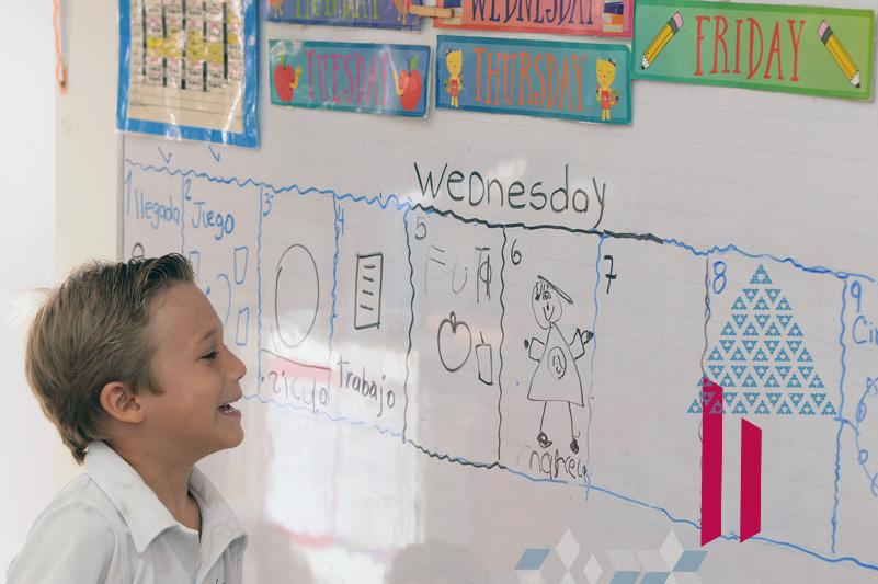 colegios bilingues cali