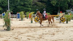 Emilio-sanchez-equitacion